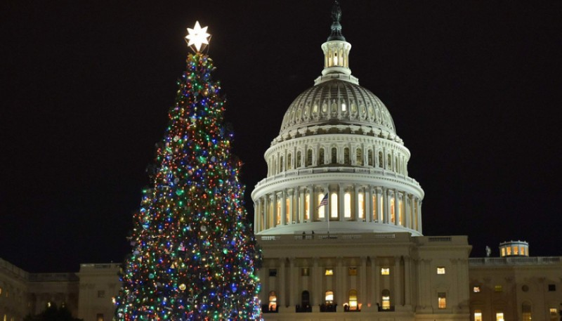 金融危機致美聖誕樹嚴重短缺 人造替代品銷量攀升