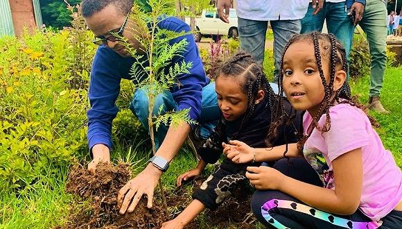 12小時種下3.5億棵樹,衣索比亞為抗旱也是拼了