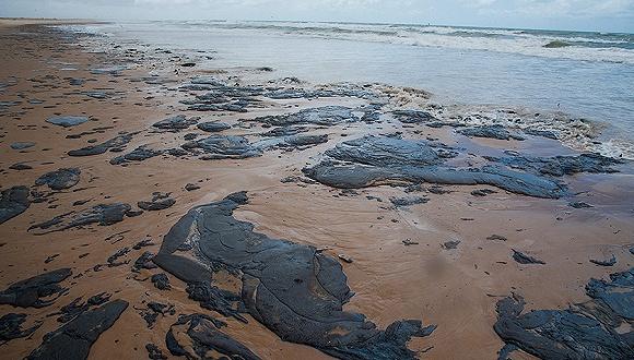亞馬孫雨林還在燃燒,巴西上百片海灘又被「火上澆油」